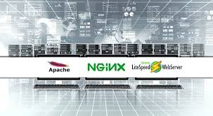 Apache Nginx Litespeed Performans Analizi
