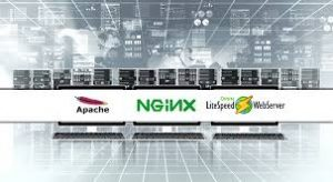 Apache Nginx Litespeed Performans Analizi